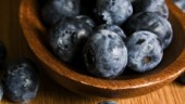 blueberries230x234