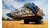 WheatBoard250x175