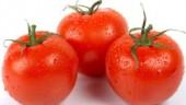 tomatoes631x354
