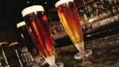 beer631x354