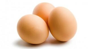eggs631x354