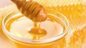honey631x354