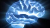 BrainWaves370x300