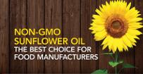 sunflower-no-gmo