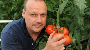 SERRES SAGAMI - Serres Sagami: Tomatoes and jobs for Charlevoix