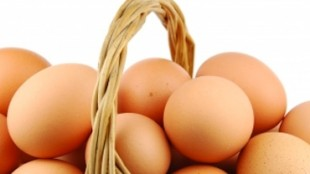 EggsinBasket370x300