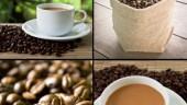 CoffeeFreeDigital370x300