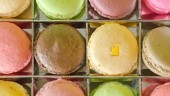MacaronsFreeDigital370x300