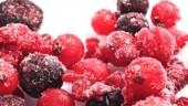 BerriesFrozenFreeDigital370x300