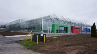 Vinelands-new-greenhouse-facility-1024x684