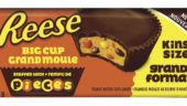 reese-big-cup-stuffed-with-reeses-pieces-candy