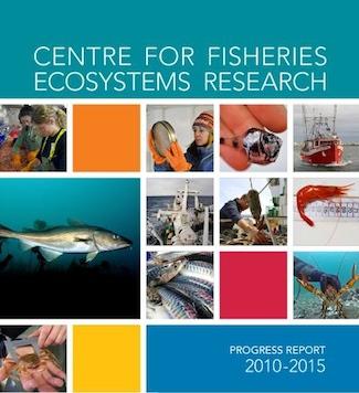 CFER's five-year progress report.