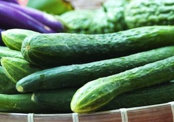 CucumberBunchFreeDigital350x247